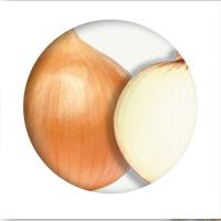cebolla-marron2